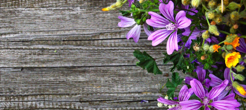 Floral and Hardie